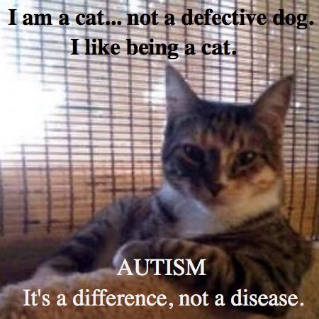 Image result for ASD spectrum and cats