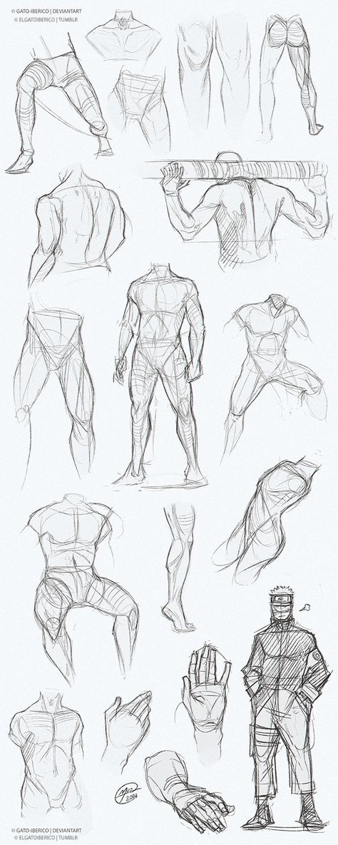 Body Art Men Anatomy Pose Reference 30 Ideas In 2020 Man Anatomy Anatomy Drawing Human Anatomy Art