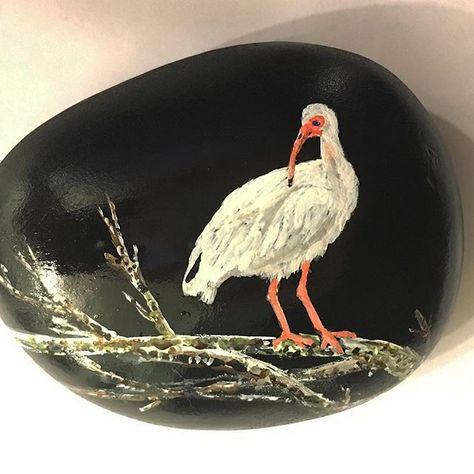 paintedstonesofinstagram Bird of the south #birds #bird...