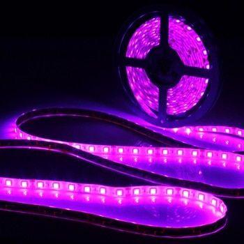 0 5 1 2 3 4 5m Waterproof Ip65 Uv Lamp Ultraviolet Purple Led Strip Light 12v Dc 5050 Smd Black Led Lamp 395 405n In 2020 Led Strip Lighting Black Lamps Strip Lighting