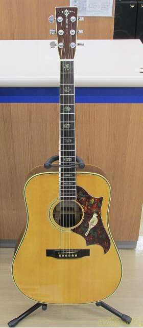 Tokai Ce 450d 4500872 Acoustic Guitar With Hard Case Used Japan Free Shipping Ideas Of Guitar Guitar Tokai Guitar Acoustic Guitar
