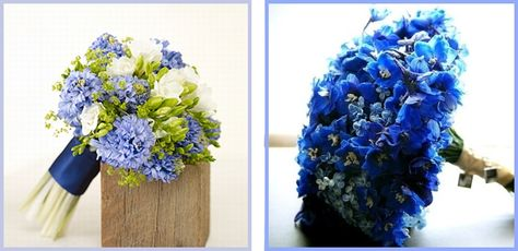 Bouquet Sposa Non Ti Scordar Di Me.Bouquet Sposa Come Sceglierlo Bouquet Bouquet Da Sposa E