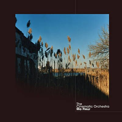 To Build A Home The Cinematic Orchestra Chanson Vinyle Musique Electro