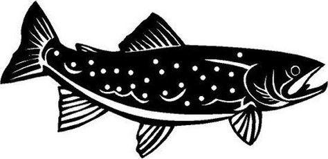 Trout Picclick Ebay 6 Stock Rainbow Trout Trout Fish Art