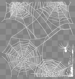 White Spider Web Vector Web Clipart Network Spider Web Png And Vector With Transparent Background For Free Download Spider Web Clip Art Png