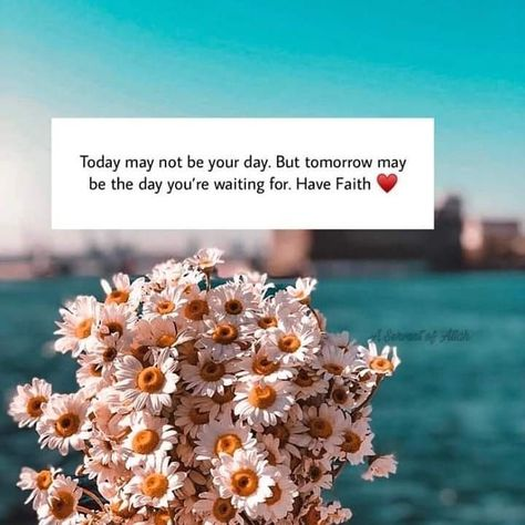 In Shaa Allah Beautiful Quran Quotes Love In Islam