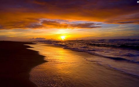 African Sunset Live Wallpaper Apk Download Free Personalization