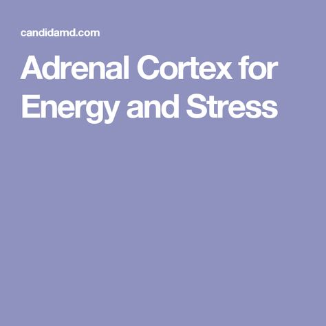 Adrenal Cortex for Energy and Stress
