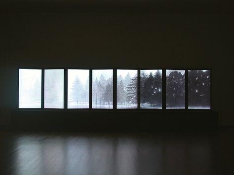 snow on trees <3