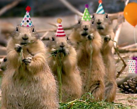Baker Bob Birthday Cake Ecard Personalize American Greetings Birthday Songs Video Birthday Songs Birthday Card Online