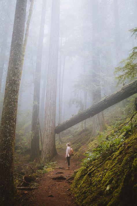 30+ Incredibly Beautiful Hikes In Washington State Worth The Sweat | The Mandagies