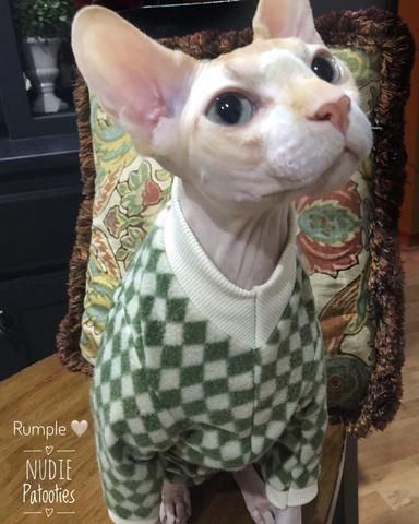 Long Sleeve Cream And Green Diamond Fleece Go Green Sphynx Cat Clothes Devon Rex Cats Bambino Cat