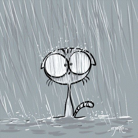 Cat Rain GIF by marko - Find & Share on GIPHY