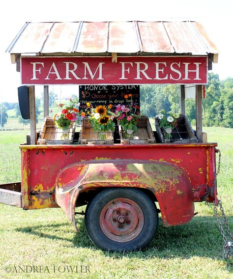 the most adorable farm stand ever! the yellow/red paint is aged to perfection and I love the reclaimed tin roof and the farm fresh sign. Sweet Carts, Produce Stand, Market Displays, Farmers Market Display, Farmers Market Stands, Farmers Market Sign, Vendor Displays, Farm Stand, Flower Stands