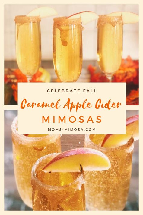 Celebrate Fall With Caramel Apple Cider Mimosas! These Caramel Apple Cider Mimosas are decadent, delicious and perfect for fall! As you know, I love a good mimosa recipe, and this is my favorite one for the holidays! Cider Cocktails, Fall Cocktails, Cocktail Drinks, Brunch Drinks, Cocktail Recipes For Fall, Apple Cocktails, Champagne Brunch, Christmas Drinks, Holiday Drinks