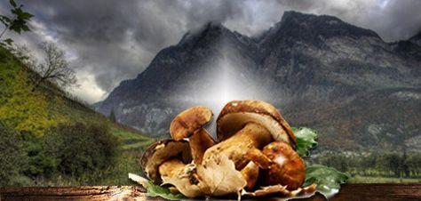 http://www.oilwineitaly.com Cervello, Nutrizione e Benessere: la nuova visione del programma Europeo. | OilWineItaly
