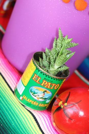Cinco De Mayo- cilantro plant in an El Pato can makes for a fun party favor or centerpiece
