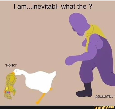 I am...inevitabI- what the ? – popular memes on the site iFunny.co #avengers #movies #untitledgoosegame #avengers #avengersendgame #am #inevitabi #pic