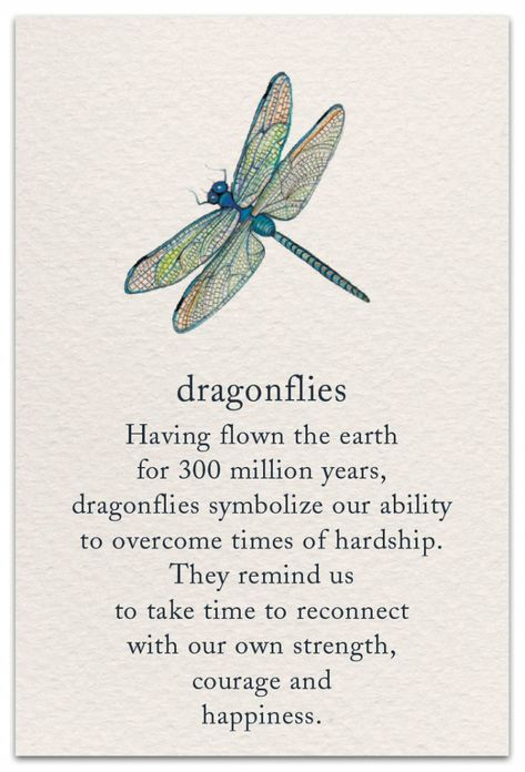 Dragonflies Support & Encouragement Card Front