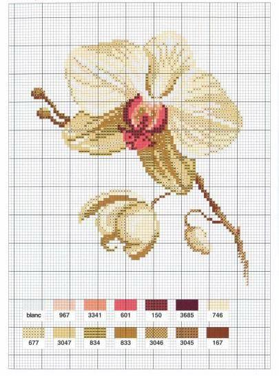 Бесплатные схемы вышивки орхидеи крестом