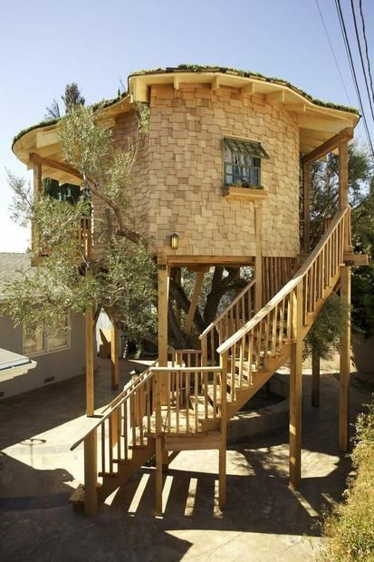 180 best pete nelson treehouse master images on pinterest the tree tree house masters and treehouses - Biggest Treehouse In The World 2015