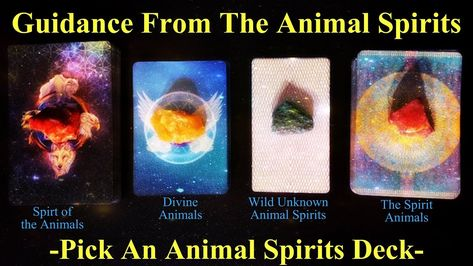 Guidance From The Animal Spirits ~ Pick A Deck