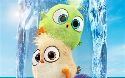 Descargar Fondos De Pantalla Neonatos 4k El Angry Birds La Pelicula 2 2019 Pelicula 3d Animacion Angry Birds 2 Besthqwallpapers Com Angry Birds Fondo De Pantalla De Aves Animacion