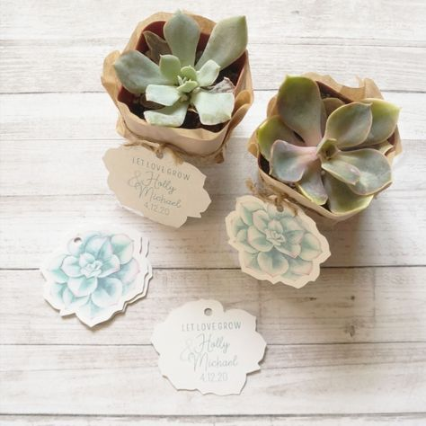 """Double sided tags are the perfect touch to your succulent favors. One side is printed with a sweet succulent image, the other has """"Let Love Grow"""" and your personalization.// #nottinghampapergoods #tags #succulent #succulentfavors #succulenttags #bridalshower #letlovegrow #babyshower #wedding #weddingtheme #weddingdecor #gifttags #bridalshowerfavors #bridalbrunch #springwedding #summerwedding #eventplanning #celebration #tablesetting #placesetting #bridalshowergifts #weddinggifts #weddingfavors"""