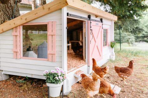 Chicken Coop Designs, Cute Chicken Coops, Chicken Coup, Backyard Chicken Coops, Backyard Farming, Chickens Backyard, Moveable Chicken Coop, Chicken Coop Decor, Chicken Coop From Pallets