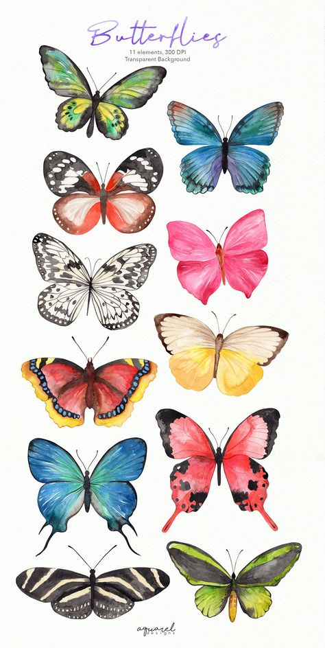 Excited to share this item from my shop: Watercolor Butterfly clipart, Butterfly PNG, wreath,