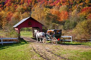 Photograph - Stowe's Gentle Giant Sleigh Rides by Jeff Folger
