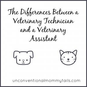 Vet Tech Quotes Pleasing The Differences Between A Veterinary Technician And A Veterinary