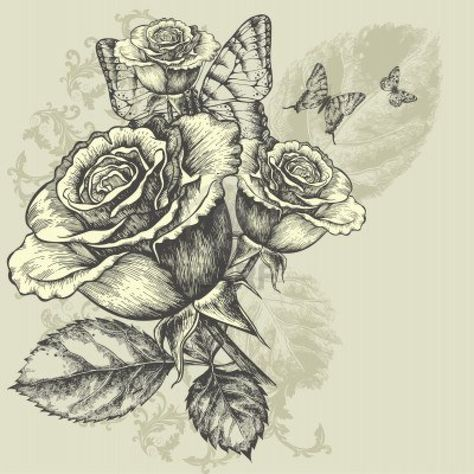 rose and butterfly drawing