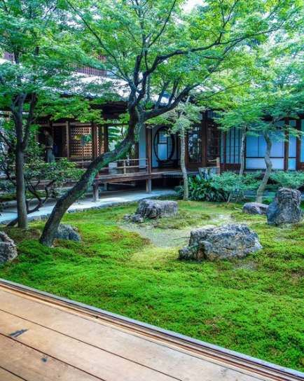 Lovely Japanese Garden With A Waterfall Ferns And A Japanese Maple
