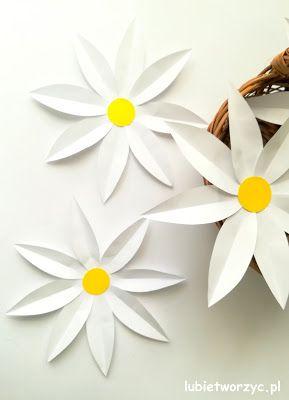 Sliczne Papierowe Stokrotki W Wersji Diy Stokrotka Daisy Stokrotki Diy Zrobtosam Kwiat Kwiatek Kwiaty Kw Paper Flowers Paper Flowers Diy Flowers