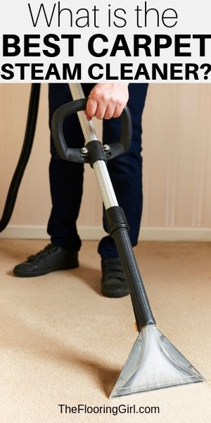 Most Current Free Of Charge Carpet Cleaner For Pet Stains Tips