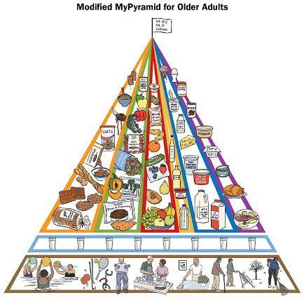 الهرم الغذائي Food Pyramid Food Pyramid Nutrition Nutrition Guidelines