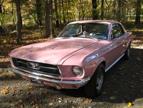 This 1967 Sprint 200 Mustang hardtop owned by Teri Garcia has been restored to its original Dusk Rose pink exterior paint. Dusk Rose was originally a 1957 Ford Thunderbird production color which came back in 1967 as a special 1967 Mustang, Mustang Cars, Pink Mustang, Ford Mustang, Pretty Cars, Cute Cars, Classy Cars, Sexy Cars, Ford Gt