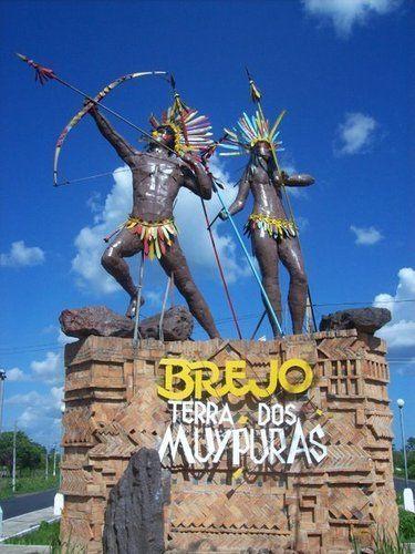 Brejo Maranhão fonte: i.pinimg.com