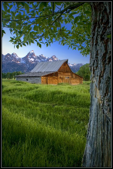Country Living ~ Wyoming