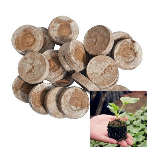 Cheap seeds starter pallet, Buy Quality seeds nursery directly from China seed starting Suppliers: Nursery Block Jiffy Peat Pellets Seed Starting Plugs Seeds Starter Pallet Seedling Soil Block Seedling block