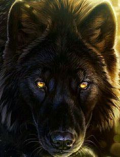 La Chica Del Cabello De Fuego 4 Peligro Fotos De Lobo Cuadros De Animales Diseño Del Tatuaje Del Fénix
