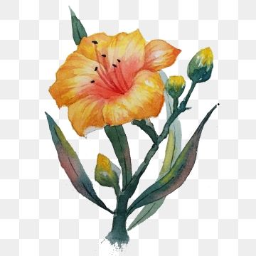 Exquisite Hand Painted Watercolor Flower Design Watercolor Flower Color Flowers Png Transparent Clipart Image And Psd File For Free Download Watercolor Flowers Painting Flower Painting