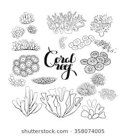 Collection Of Ocean Plants And Coral Reef Elements Drawn In Line Art Style Isolated On White Coloring Page Des Coral Reef Art Coral Drawing Coral Reef Drawing