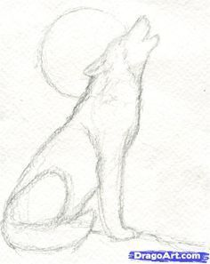 Etape 5 Comment Dessiner Un Loup Hurlant Comment Dessiner Un