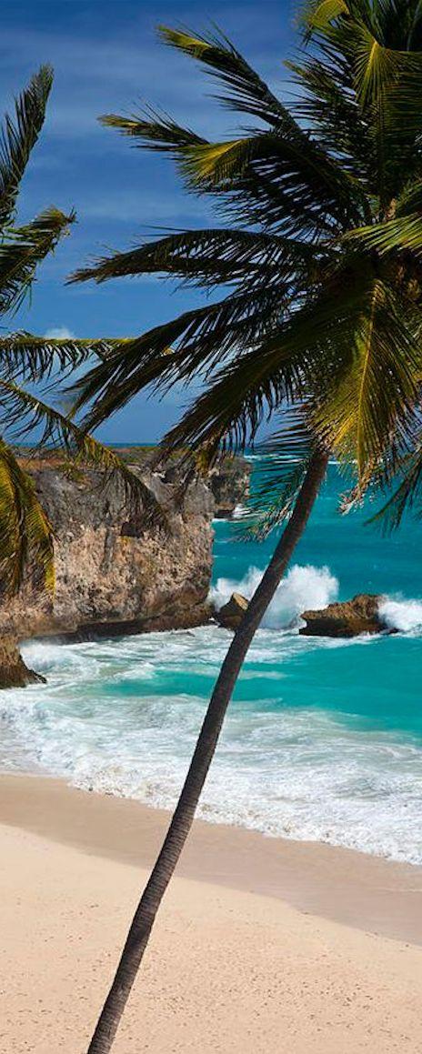 Pic of the Day...Coasts + Cliffs ---------------------- #beach #cliffs #coastal #tropics #water #ocean #waves