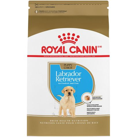 Royal Canin Breed Health Nutrition Labrador Retriever Puppy Dry Dog Food 30 Lbs Labrador Retriever Labrador Labrador Puppy Training