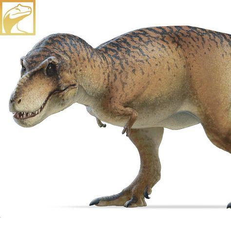 CollectA Prehistoric Life Gigantoraptor #88307 Dinosaur Figure Toy Figurine