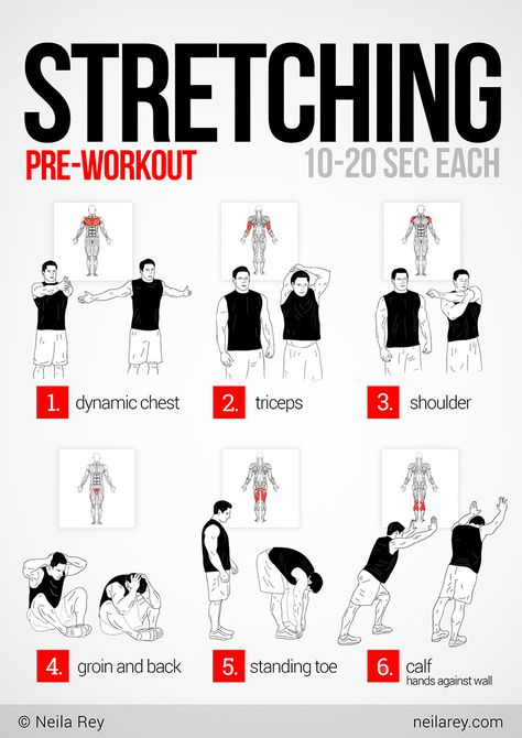 Pre-workout stretching. Hold each pose for 20 seconds.