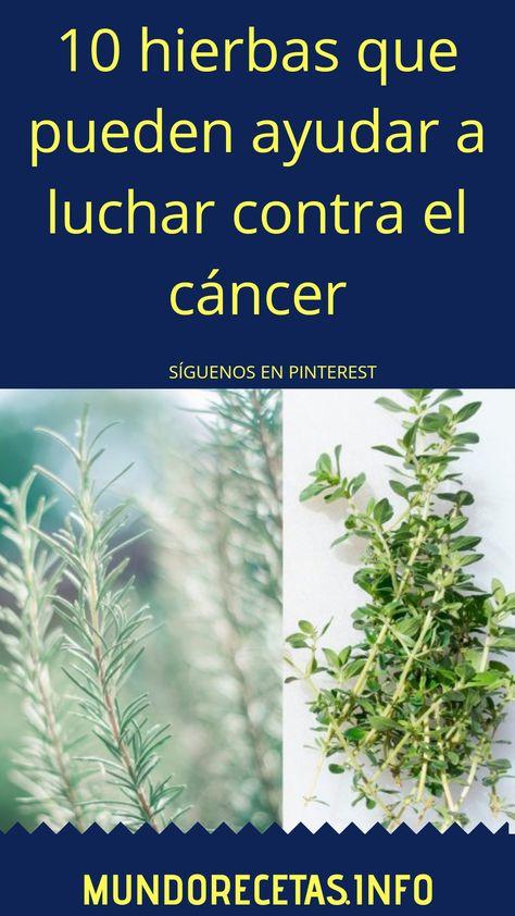 12 Ideas De Remedios Naturales Contra El Cáncer Remedios Naturales Remedios Plantas Medicinales